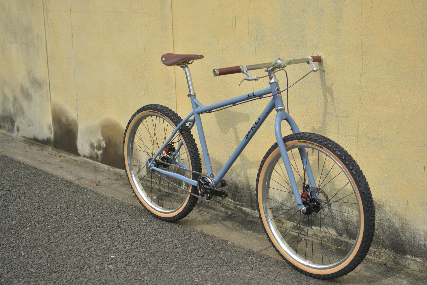 surly-1x1-12