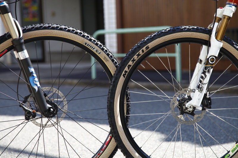 Maxxis Ardent Skinwall