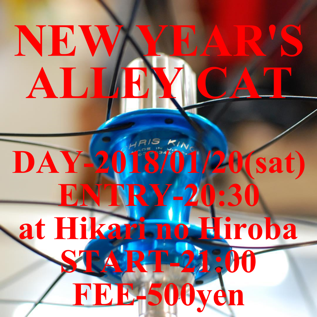 NEW YEAR'S ALLEY CAT