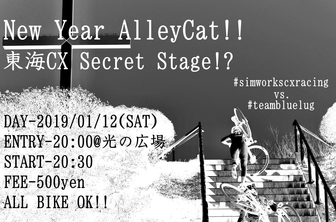 New Year AlleyCat 東海CX Secret Stage!?
